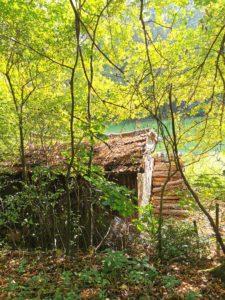 2020-11-10-Holz vorm Haus