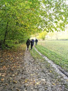 2020-11-10-Wandern im Mettertal